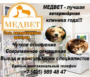 МЕДВЕТ - сеть ветеринарных клиник в Москве и Подмосковье